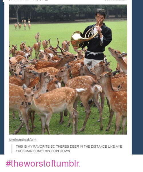 Man fuck deer - Pics and galleries. Comments: 2