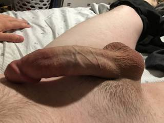 Petal reccomend Amateur dick picture