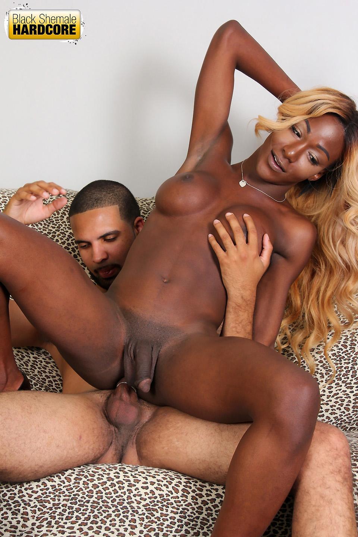 Black Sheman Porn