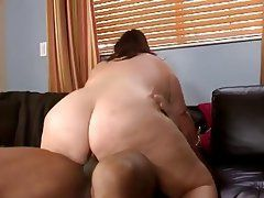 Quickly thought)))) compilaion latina anal opinion