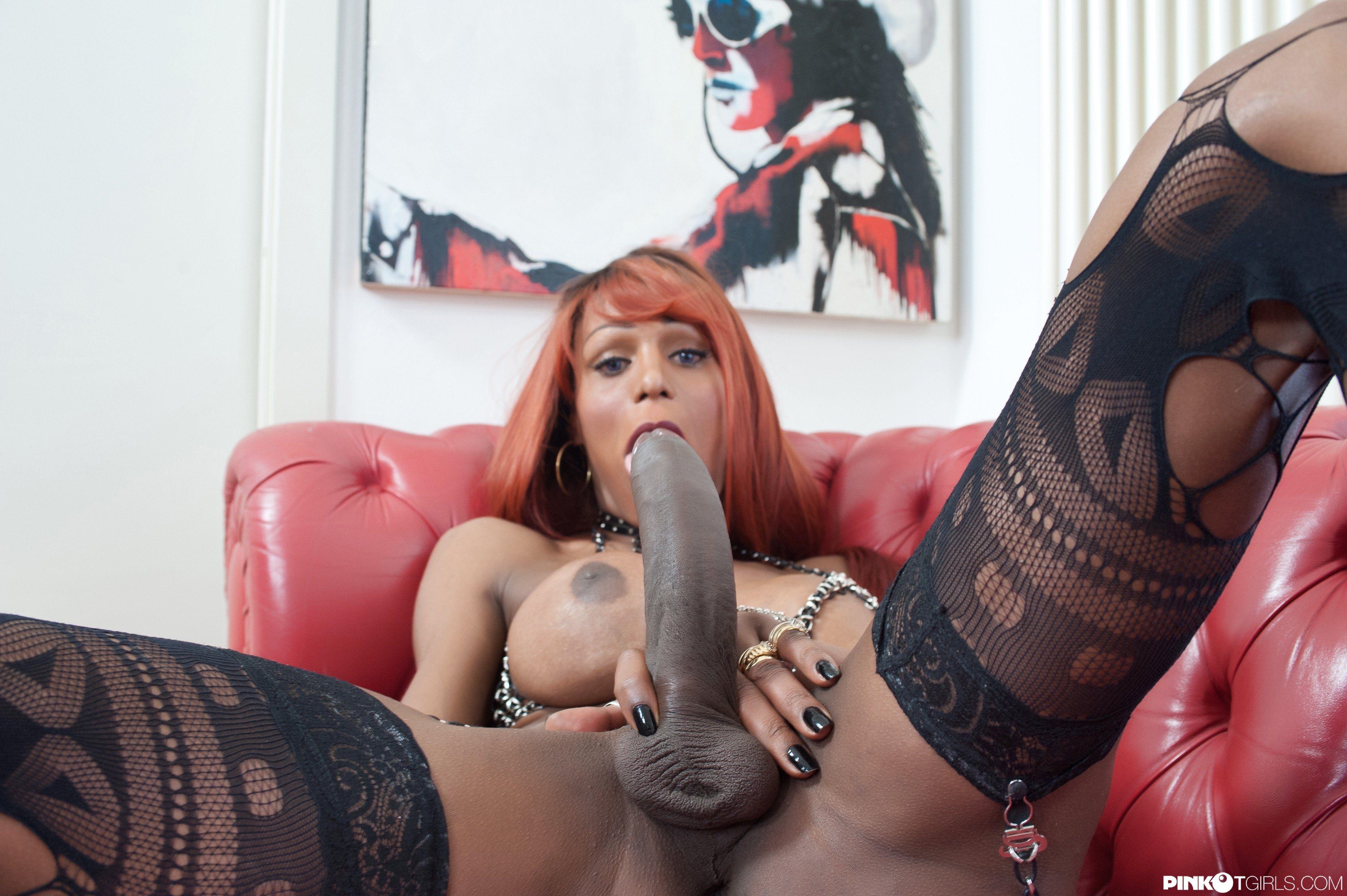 3 Shemales Having Sex monster shemales in females - porn tube.
