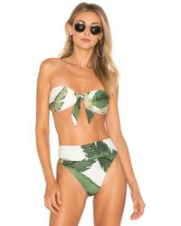 Prancer in a bikini